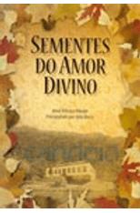 Sementes-do-Amor-Divino-1png