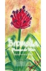 Bromelia---Poesias-de-Mae-1png