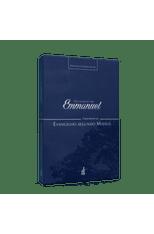 Evangelho-por-Emmanuel-O---Comentarios-ao-Evangelho-segundo-Mateus-1png