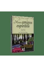 Meus-Amigos-Espiritos-1png